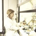 Research at SulfaTrap on desulfurization